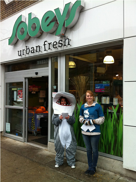 Volunteering @Greenpeace – Clover Leaf's Unsustainable Tuna