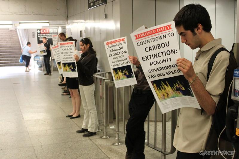 Le bénévolat @ Greenpeace – Toronto